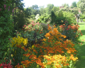 A Passion for Pashley Manor Gardens