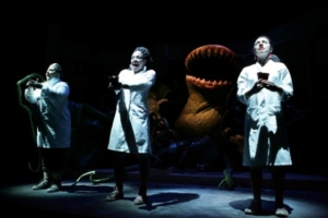 Little Shop of Horrors, Assembly Hall Theatre