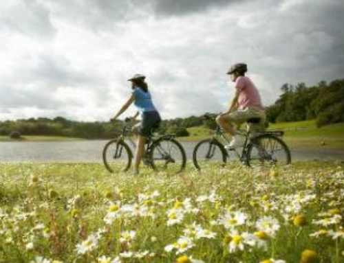 On Two Wheels Around The Weald