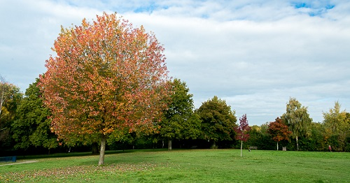 St John's park, one of many green open spaces in the town of Royal Tunbridge Wells
