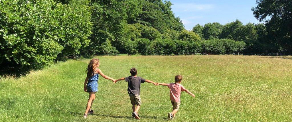 kids in field in Summer
