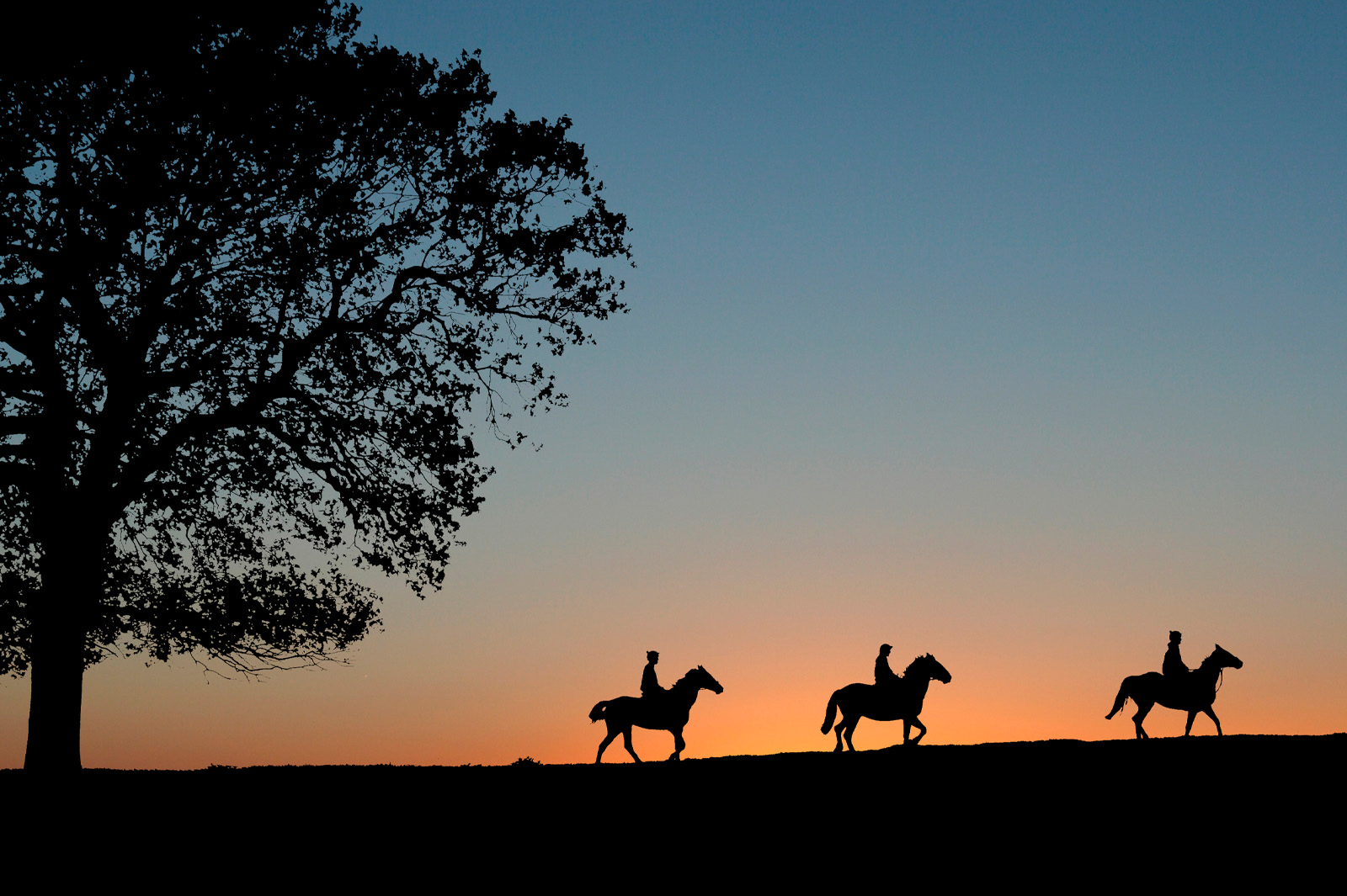 Sunset Horse Riding - photo by Mike Bartlett