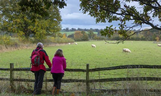 walking - Explore Kent