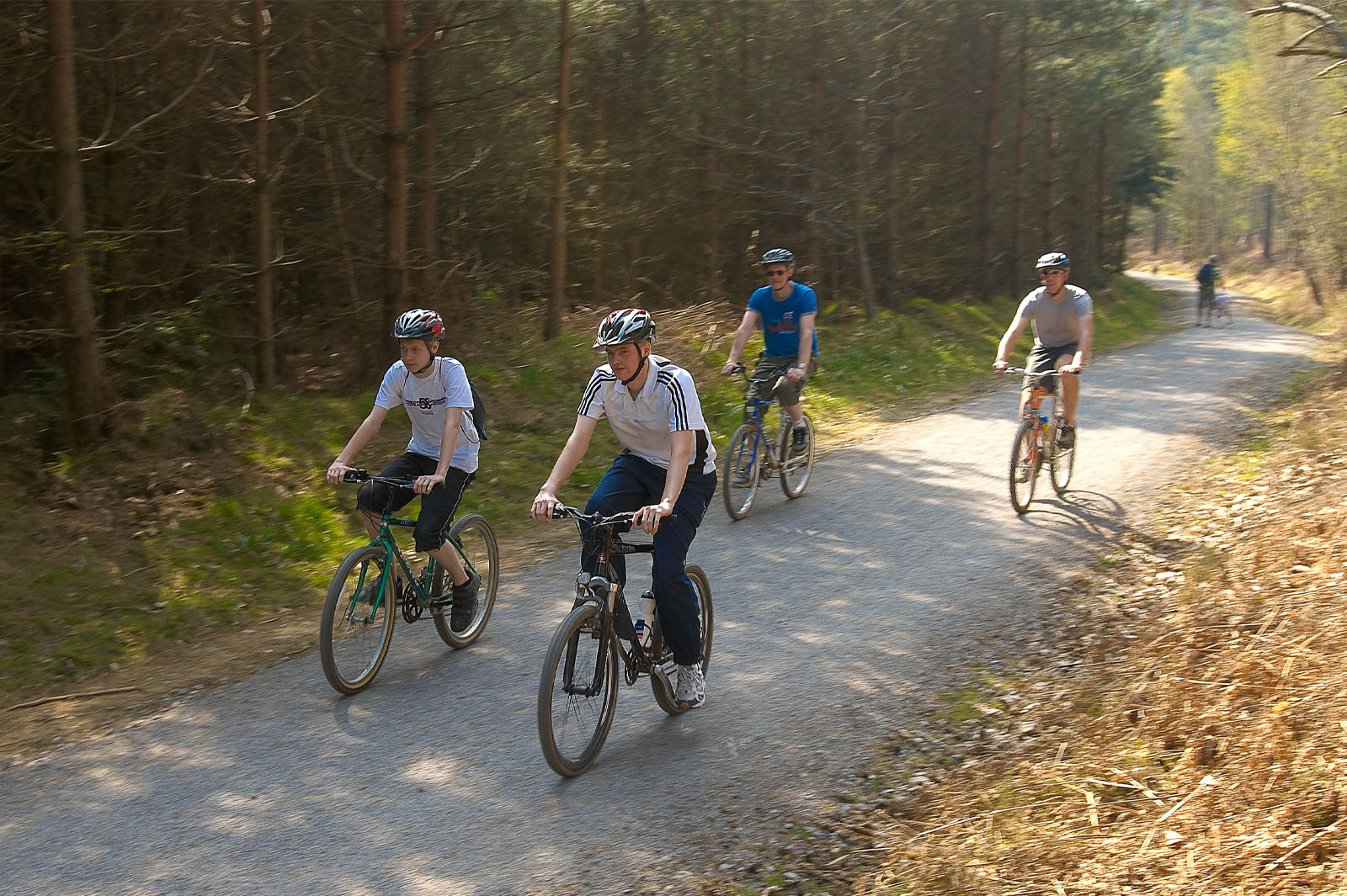 Try the Cycle trails at Bedgebury! - photo by David Hodgkinson