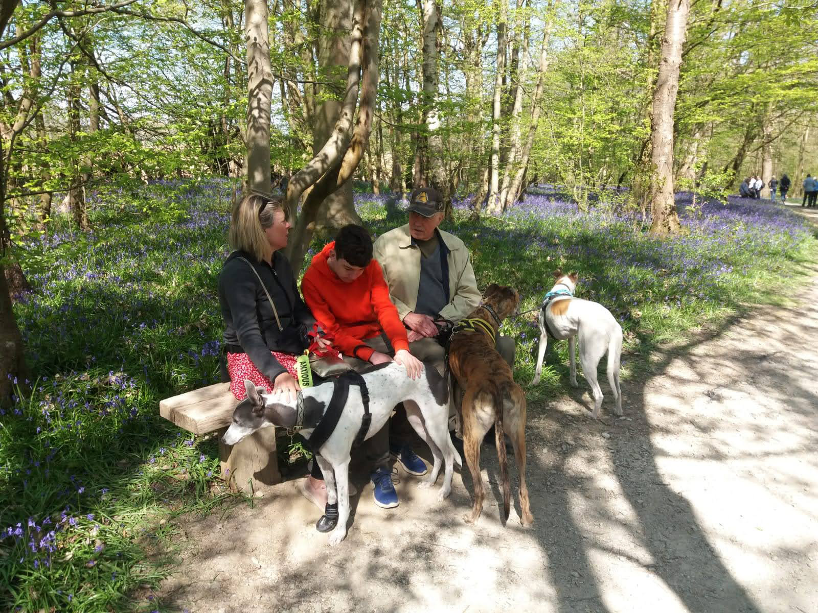 Hole Park, family and dog friendly in Tunbridge Wells