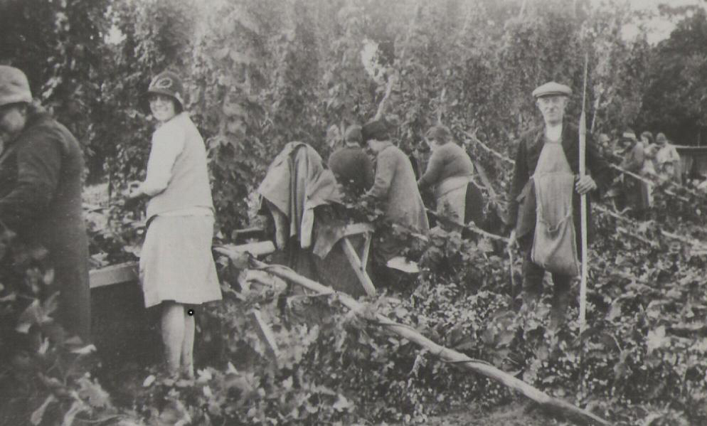 Hop pickers at Paddock Wood