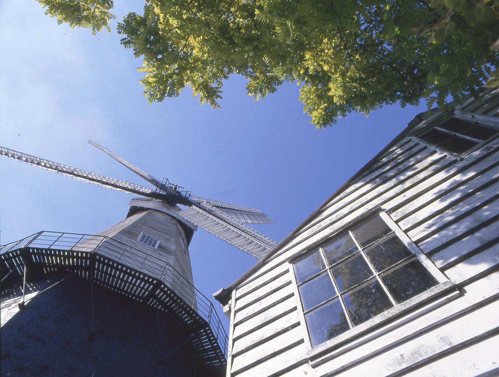 windmill at cranbrook