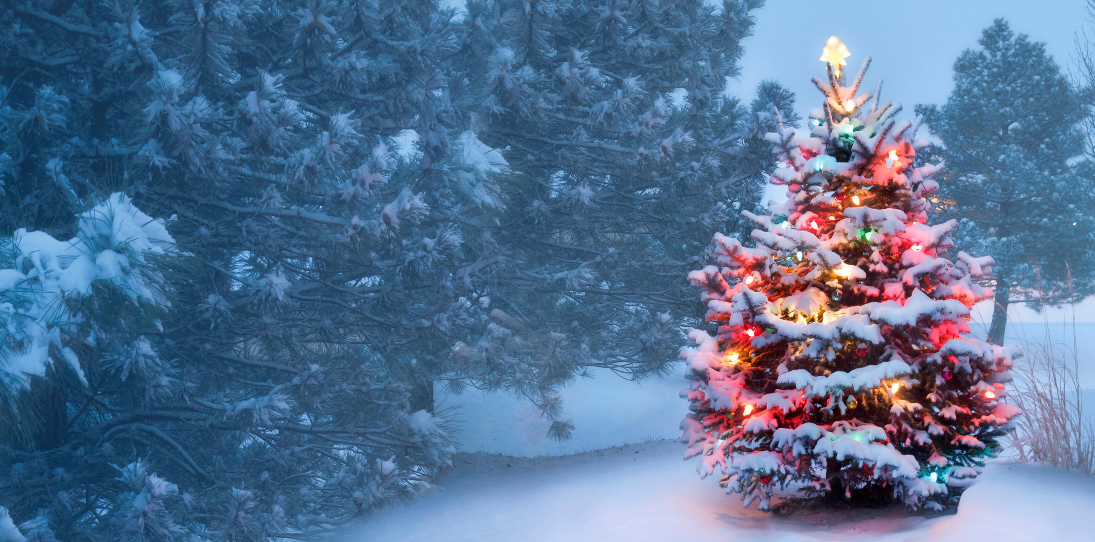 Tunbridge Wells is Christmas
